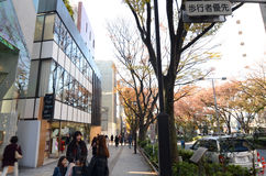 Japan,Tokyo - Nonember 24, 2013: People shopping at Omotesando Street Royalty Free Stock Image