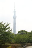 Japan : Tokyo Skytree Stock Photo