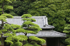 Japan Tokyo Tokyo Imperial Palace Rooftop of Otemon (East Gate) seen through trees Stock Image