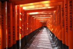Japan torii gates Stock Images