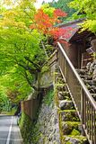 Japan traditional building, zen garden, village footpath, green plants. The vertical Japan traditional building, zen garden, village footpath, green plants and stock photos