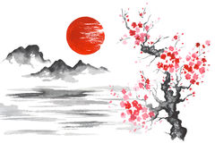 Japan Traditional japanese painting Sumi-e art Sun Mountain Sakura Lake Stock Photography