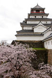 Japan : Tsurugajo Castle in Spring Royalty Free Stock Image