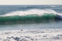 Japan tyfon som surfar den jätte- vågen på den Hebara stranden i Japan Arkivfoton
