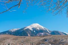 Japan vinterberg Royaltyfri Foto
