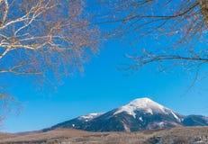 Japan vinterberg Royaltyfri Fotografi