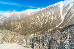 Japan Winter mountain with snow covered. Royalty Free Stock Photo