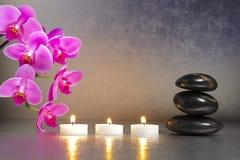 Free Japan Zen Garden Stock Image - 29943121