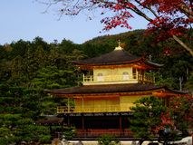 Japan zen golden temple. Place in front lake and garden stock photos