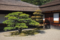 Japan zen temple garden Stock Image