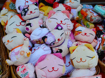 Japaner Cat Toys stockbilder