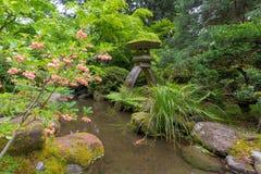 Japaner Snowbell in der Blüte durch Steinlaterne Lizenzfreies Stockbild