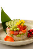 Japanese appetizer of rice and tuna with vegetabl Stock Photography