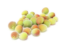 Japanese apricot Royalty Free Stock Images