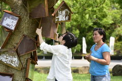 "Japanese artist. Japanese artist Junko Maruyaman is working on "" Memories of Tung Trees "" , for  "" 2016 THE HAKKA TUNG BLOSSOM FESTIVAL ""  in Miaoli , TAIWAN Stock Photo"