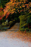 Japanese Autumn Stock Photo