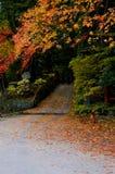 Japanese Autumn Stock Photo
