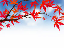 Japanese autumn. Stock Image