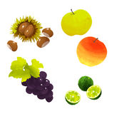 Japanese autumn fruits. Autumn fruits by watercolor paint touch Stock Photos
