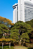 Japanese autumn park and skyscraper Royalty Free Stock Photos