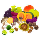 Japanese autumn vegetables. Autumn vagetables by watercolor paint touch Royalty Free Stock Images