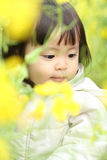 Japanese baby girl and yellow field mustard. Japanese baby girl (1 year old) and yellow field mustard Royalty Free Stock Photo