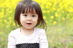 Japanese baby girl and yellow field mustard. Japanese baby girl (1 year old) and yellow field mustard stock photo