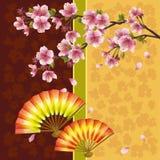 Japanese background with sakura cherry tree Royalty Free Stock Photography