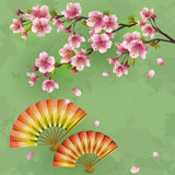 Japanese background with sakura and fans Royalty Free Stock Photos