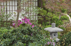 Japanese backyard garden Stock Images