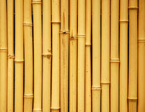 Japanese bamboo background. Japanese bamboo as an interior furnishing in Japan Royalty Free Stock Photo