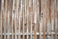 Japanese bamboo fence Stock Photography