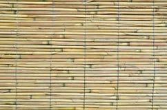 Japanese bamboo texture Stock Photo