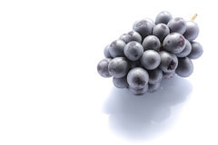 Japanese black grape on white Royalty Free Stock Photo