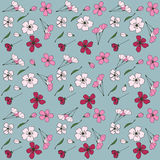 Japanese blossom sakura. Seamless pattern with Japanese blossom sakura.Vector floral pattern, pink sakura outline art for greeting card, package design cosmetic Royalty Free Stock Photo