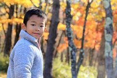 Japanese Boy And Autumn Leaves Stock Photo