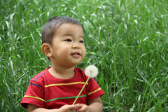 Japanese boy blowing dandelion seeds Royalty Free Stock Photo