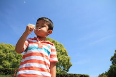 Japanese boy blowing dandelion seeds Stock Photos