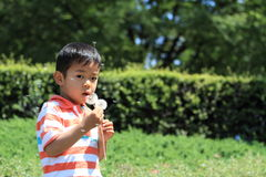 Japanese boy blowing dandelion seeds Royalty Free Stock Image