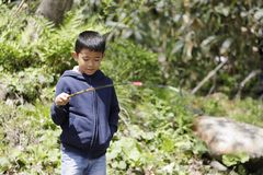 Japanese boy catching fish. Fourth grade at elementary school royalty free stock photo