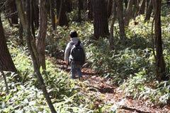 Japanese boy on a hike Royalty Free Stock Image