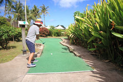Japanese boy playing with putting golf Royalty Free Stock Images