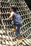 Japanese boy playing with rope ladder Royalty Free Stock Photography