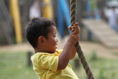 Japanese boy playing with Tarzan rope Royalty Free Stock Photos