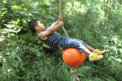 Japanese boy playing with tarzan rope Stock Photography