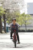 Japanese boy riding on the bicycle under cherry blossoms. Fourth grade at elementary school stock image