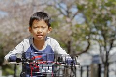 Japanese boy riding on the bicycle under cherry blossoms stock photos