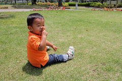 Japanese boy sitting on the grass Stock Images