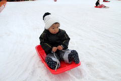 Japanese boy on the sled Stock Photo