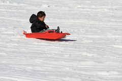 Japanese boy on the sled Stock Images